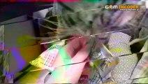 7つの実践型サロン集客術 DVD4枚組 送料無料  実践 検証 動画 結果 特典 購入 ネタバレ レビュー 感想 口コミ ブログ 体験 評価 評判