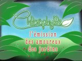 Chlorophylle épisode 77 sur Télé Doller