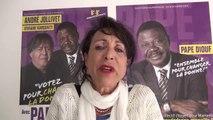 Viviane KARSENTY avec-pape-diouf-municipales-2014-marseille-6-et-8eme-arrondissements