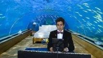 Barış Manço UNUTAMADIM Duygusal Aşk Dün Piyano Solo Sound Resitali Piano Yine Yalnız Yollar Hatırla Yağmurlar Islanan Bomboş Sokaklar Gözleri Yaş Kalbimde Sızı Unutmadım Seni Unut Unutama Unutma Ne Olur Anla Beni Unutmak Kolay Demiştin Alışırsın Öyleyse S