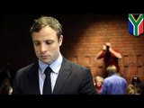 Oscar Pistorius explains how he killed girlfriend Reeva Steenkamp in affidavit