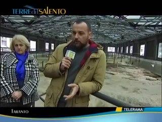 Taranto sotterranea la necropoli