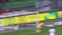But Abdoulaye DOUCOURE (87ème) - Stade Rennais FC - Toulouse FC - (2-3) - 15/03/14 - (SRFC-TFC)