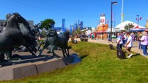Square of Horses of Stampede Grounds.