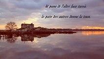 Proverbes Corse  Réserve naturelle de l'Étang de Biguglia