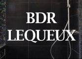 BDR Lequeux à Sucy-en-Brie, Val de Marne, 94. Travaux tous corps d'état.