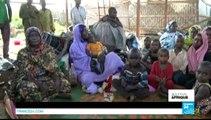 Journal de l'Afrique - La justice ivoirienne accepte le transfèrement de Charles Blé Goudé à la CPI
