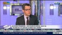 Matières premières: qu'est ce qui explique la hausse des cours du nickel depuis le début de l'année ?: Raphaël Dubois, dans Intégrale Bourse - 21/03
