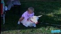 Crazy and Funny kids compilation... playing with animals, and doing crazy things!