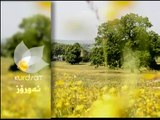 Dramay Rawchi Koylekan Alqay 15 درامای ڕاوچی کۆیلهکان ئهڵقهی