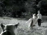 Lassie le chien de matrix