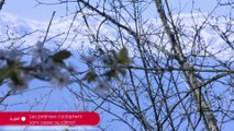 SUJET - Les jardiniers s'adaptent sans cesse au climat