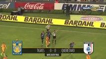 Tigres 0 - 2 Querétaro... El Gallo cantó y terminó con la racha de Tigres
