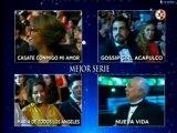 premios tvynovelas 2014 pt2