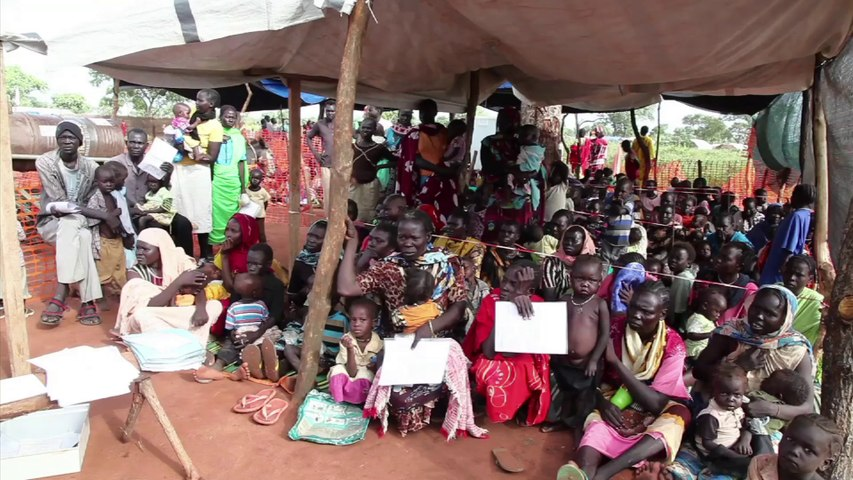 Health priorities during humanitarian emergencies with population displacement (introduction)