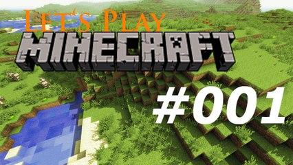 Let's Play: Minecraft #001 [Deutsch   HD]