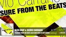 Alex Gray & Silvio Carrano - Pleasure From The Beats (Alex Gray Back To 90's Remix) Official Audio