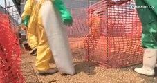 Grave epidemia do vírus Ebola é identificada na Guiné