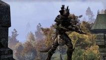 The Elder Scrolls Online - War in Cyrodiil - da Bethesda