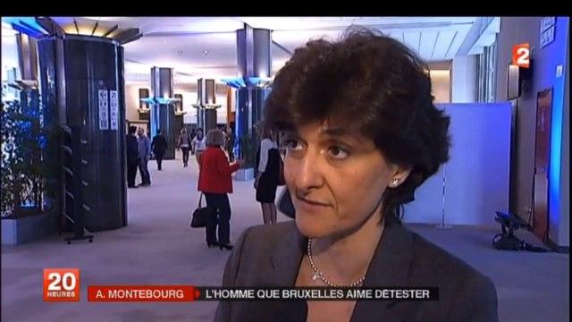 Sylvie Goulard interview au JT de France 2 - 5 avril 2014