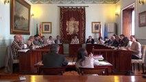 Pleno ordinario Ayuntamiento de Castro Urdiales 04042014 002