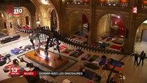 Une nuit au musée... avec des dinosaures