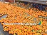 Γέμισε με πορτοκάλια η εθνική
