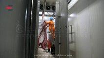 Shower Cabin for Cattle (Büyükbaş Duşlama Kabini) CEMSAN