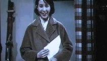 Le cinéma japonais - Les extraits de films projetés pendant la conférence de Nicolas Thévenin