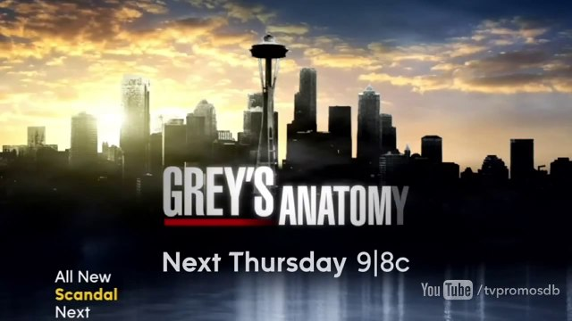 "Grey's Anatomy - 10x20 - Bande-annonce - Promo ""Go It Alone"" (HD)"