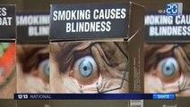 Des paquets de cigarettes pour dégoûter les fumeurs en France ?