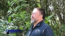 A Berlin, une exposition géante consacrée à Ai Weiwei