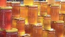 Apithérapie: des soins à base de miel et de piqûres d'abeilles