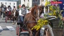 Landerneau. La fête du cheval mène fière allure