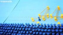 Mantar panoda raptiyelerle yapılmış müthiş animasyon (Elastika)