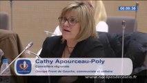Intervention Cathy Apourceau-Poly carte de formation professionnelle 14-02-14