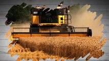 Biotechnologies: les organismes génétiquement modifiés