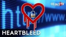 Heartbleed : que faire face à la faille de sécurité qui fait mal au coeur ?