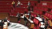 Intervention en séance de Sandrine Doucet - PPL stages séance 24.02.2014