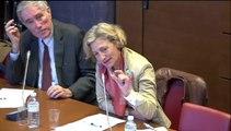 Audition de Mme Bernadette Devistor, pdte Conférence nationale de santé et de M. Sylvain Denis, Comité national des retraités et personnes âgées  - Jeudi 17 Avril 2014