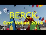 Cerf volant Berck 2014