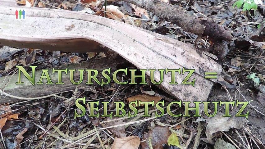 Hainburg: Folgen einer politischen Inkompetenz im Naturschutz (HD)