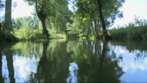 Le Marais poitevin de nouveau Parc naturel régional (Vendée)