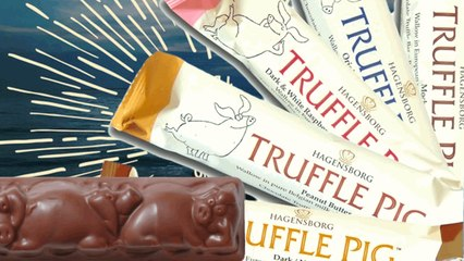 Chocolate Truffle Pigs