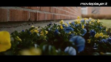 Il centenario che saltò dalla finestra e scomparve - Video recensione