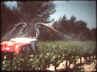 Vintage - La Route des Vins Côtes du Ventoux
