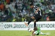 Libertadores - Ronnie dans ses oeuvres