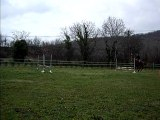 Kahlia ligne oxer longue
