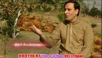 Da Wisal Shapa Laila Afghan Pashto SOng....Singer Musharaf Bangish....Da Pukhtoon Inqelab Afghan Pashto Song Album