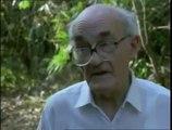 GLADIATORS OF WORLD WAR II - THE CHINDITS - Military History (documentary)